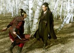 Best new Martial Arts movies (2016) - Top Netflix & Cinema